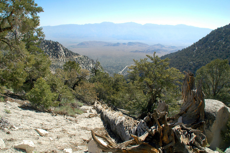 Looking down the canyon at the Alabama Hills and the Inyo Mountains in the distance.