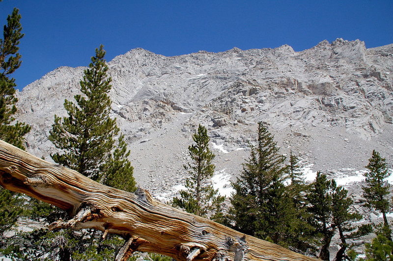 Looking up Lone Pine Peak's steep west face from Grass Lake.