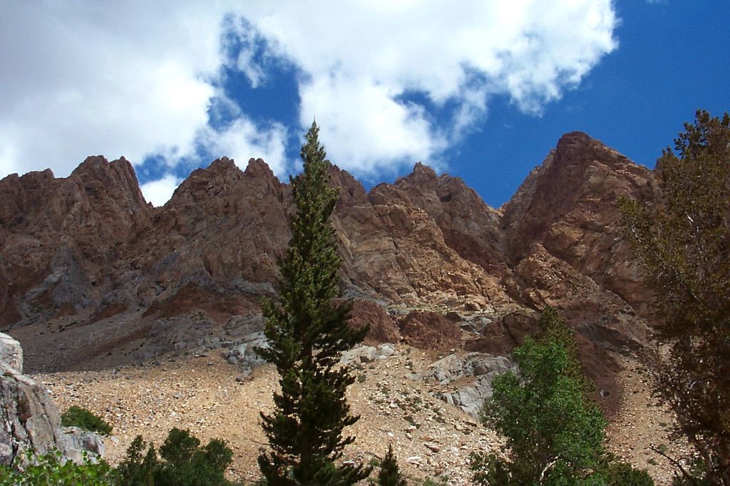 Looking up at the Piute Crags from the trail.