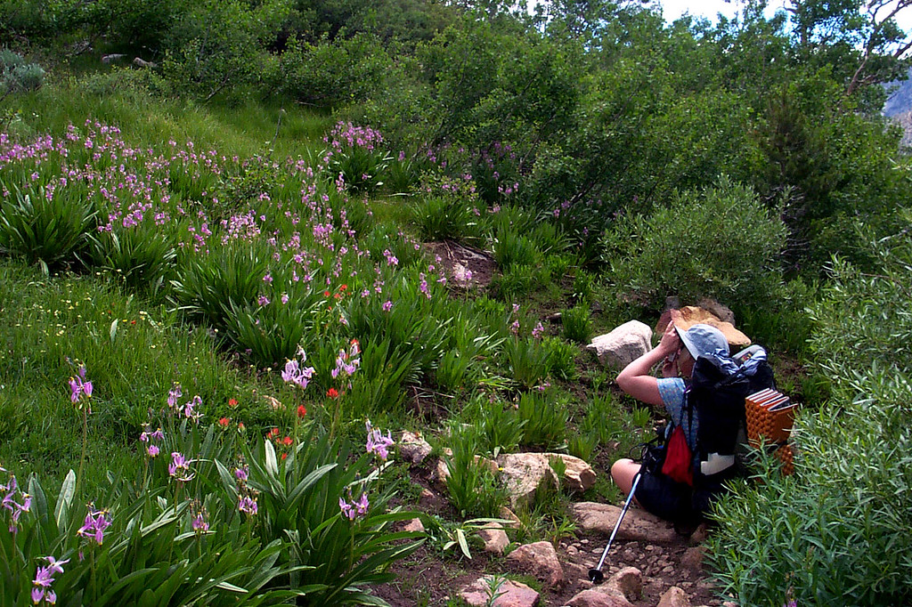 Kathy getting a shot of the flowers that were along the trail.