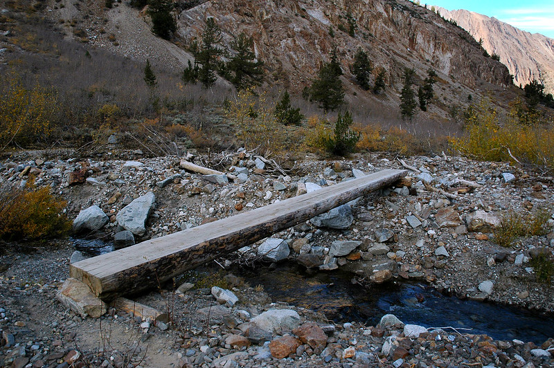 There has been work done on this trail since last year, this log bridge is new.