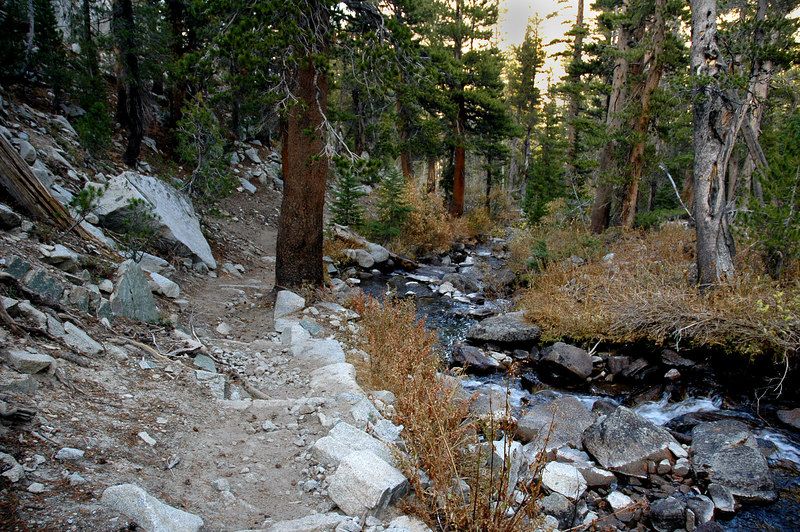 Along McGee Creek, about half way out.