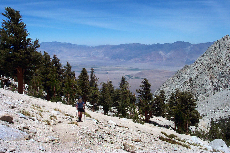 The trees started to thin out above 10,000 feet.