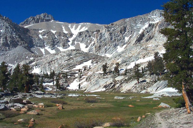 Nice meadow at Camp Lake at 11,100 feet.