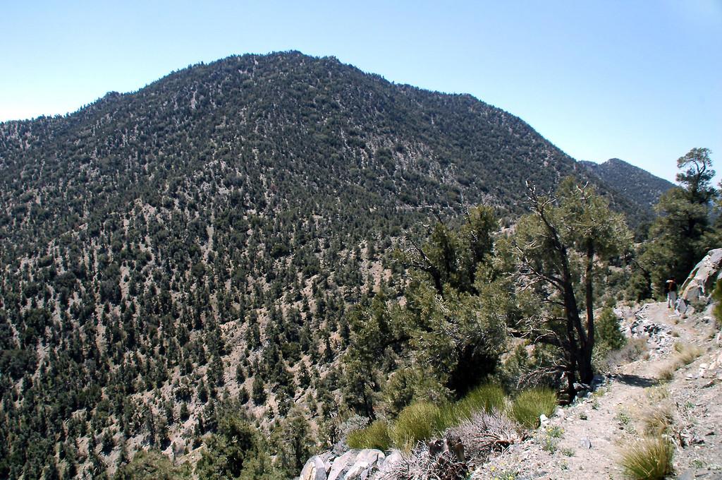 View of Morris Peak.