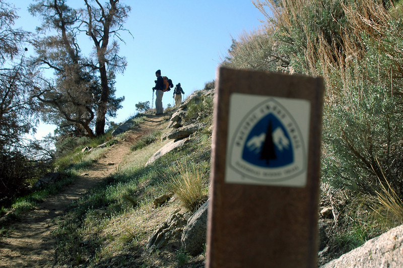 One of the PCT signs along the trail.