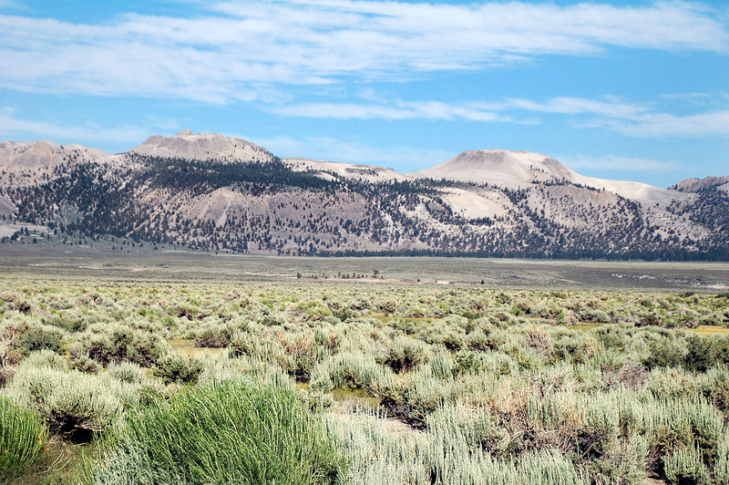 View of the Mono Craters from Hwy 120 with Crater Mountain on the left and South Crater on the right.