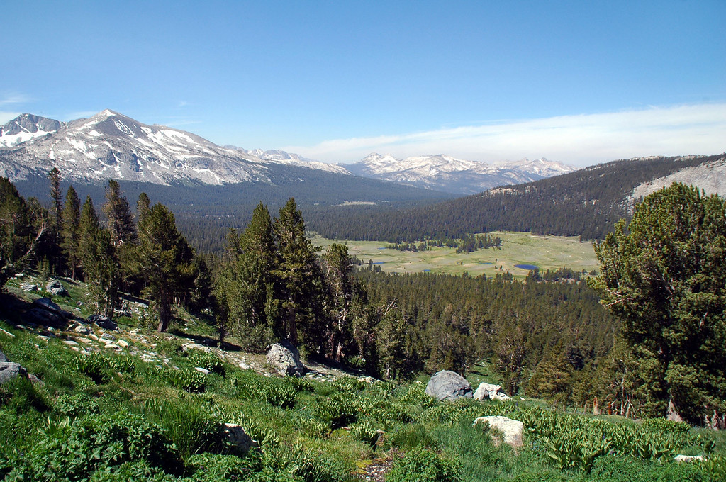 View to the south with Mammoth Peak and a section of Dana Meadows.