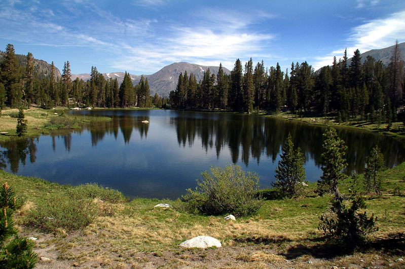 One of the many ponds in Dana Meadows.