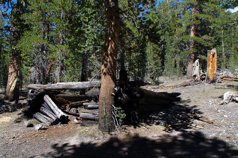 Passed by the remains of a couple of old cabins that were along side of the trail.