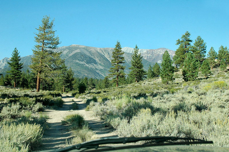 Heading to Rock Creek Lake where I'll meet Kathy for the hike to Mount Morgan after spending the night near the Owens River Gorge.