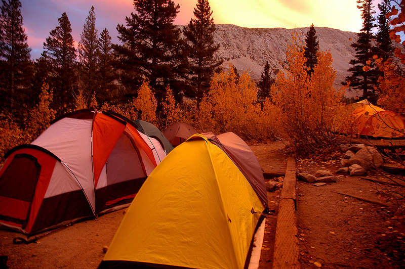 Some of the tents at camp in the glow of sunset.