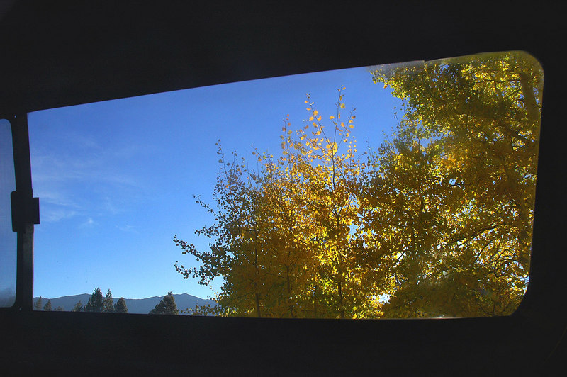 Fall colors from the back of my truck at the Rock Creek Group Campground. The plan for today is to hike to Mount Starr.
