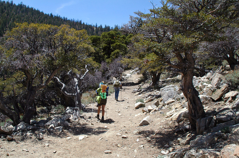 Hiking on to the pass.