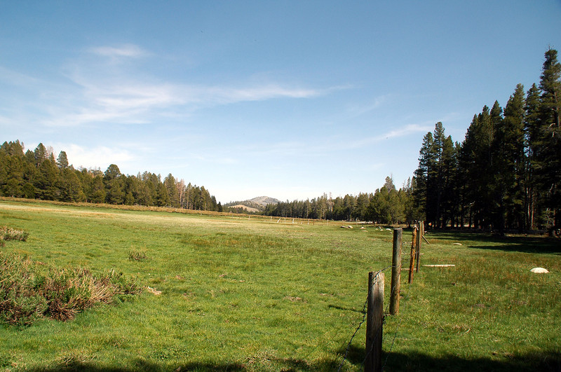Another view of Summit Meadow with Round Mountain in the distance.