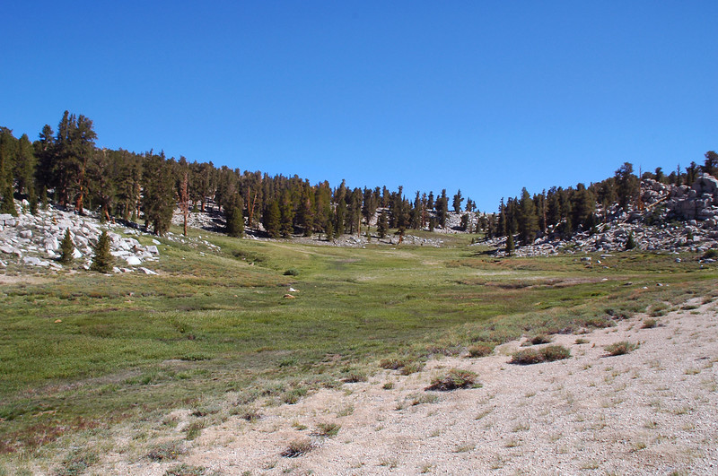 We came across a trail and followed it to this meadow.