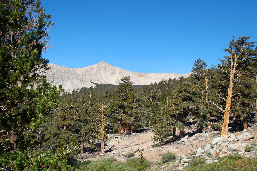 We got a good view of Cirque Peak.