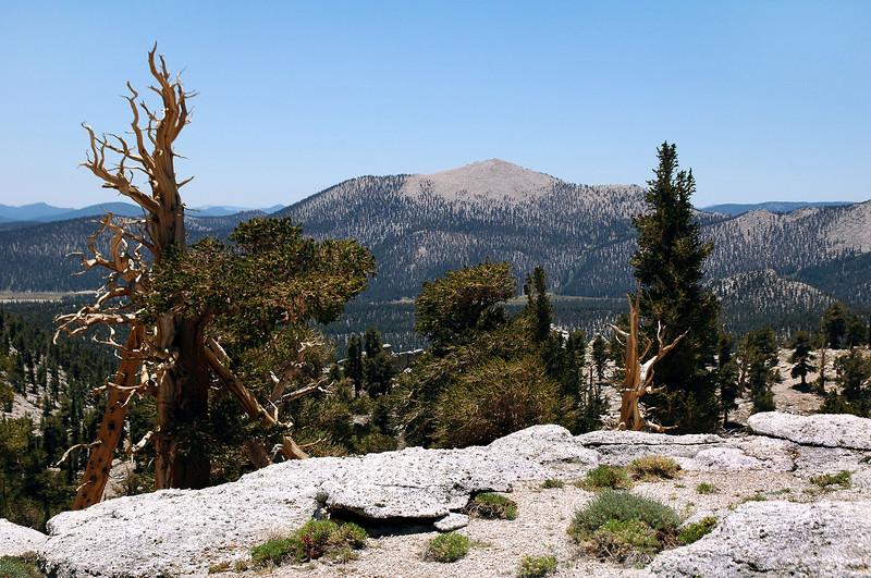 Trail Peak.