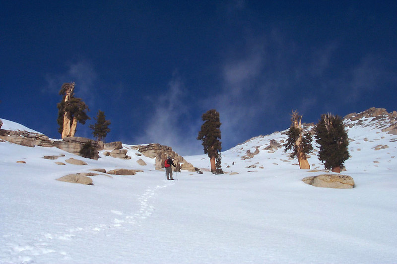 You can see Alta Peak's summit on the right, this section was really steep.