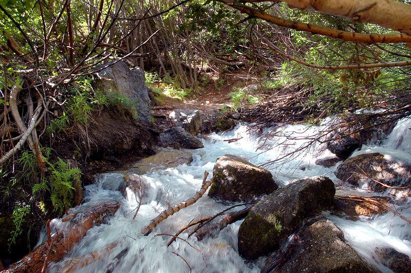 First stream crossing.