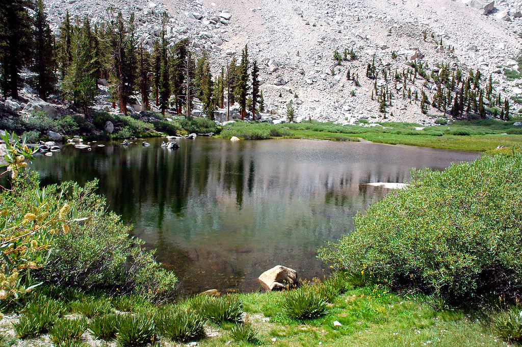 At Lower Boy Scout Lake at 10,330 feet. Stopped here to eat. This is where I'll leave the trail and start climbing to Thor Peak.