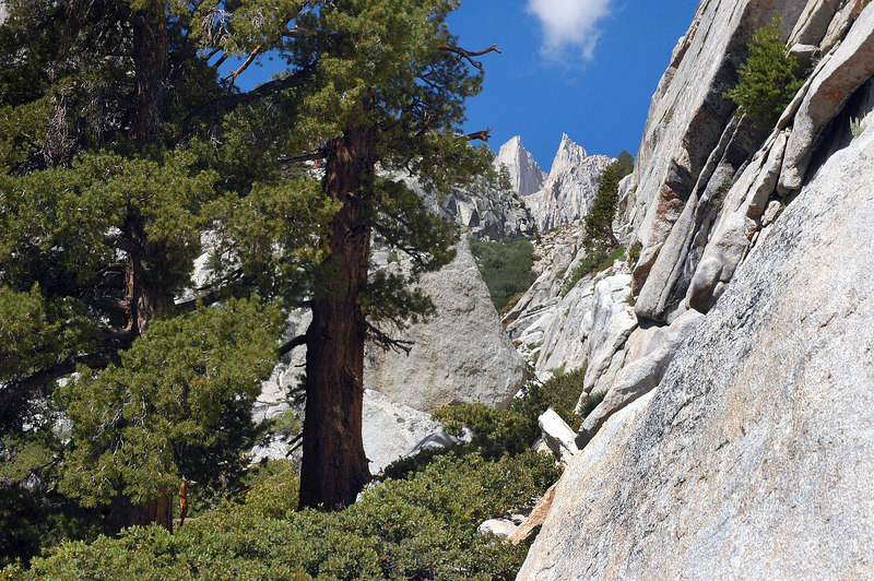 Whitney's needles come into view. The trail goes along this wall.