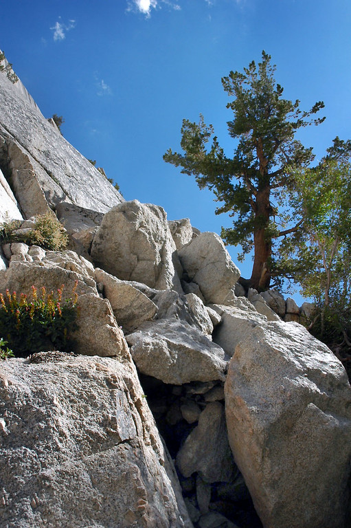 This is where you first climb up on the Ebersbacher Ledges.