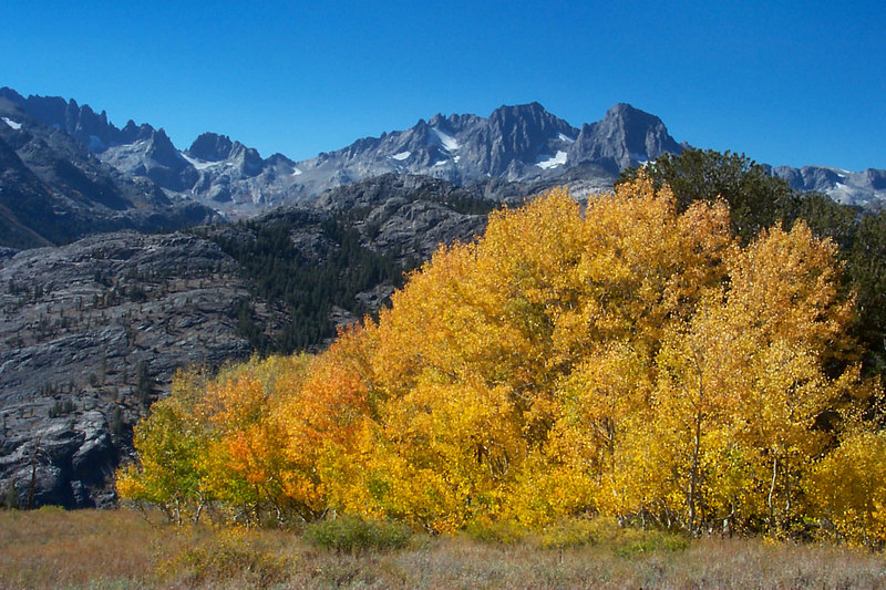 There was a lot of fall color in the area.