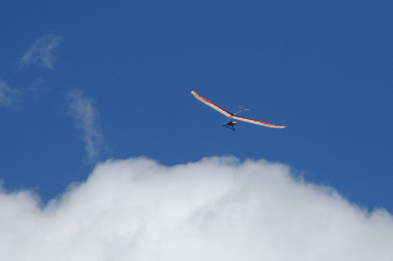 Zoomed in on one of the gliders.