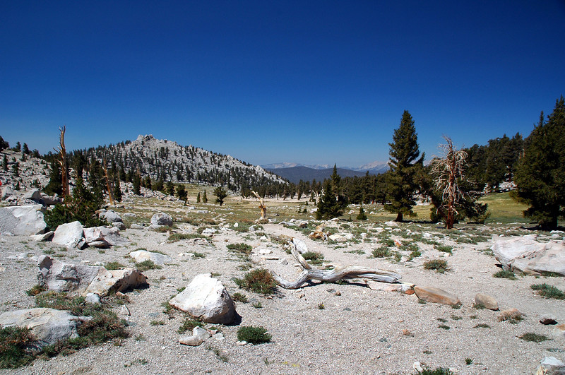View to the west from the pass.