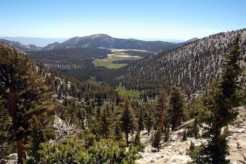 Another view of Horseshoe Meadow from near the pass.