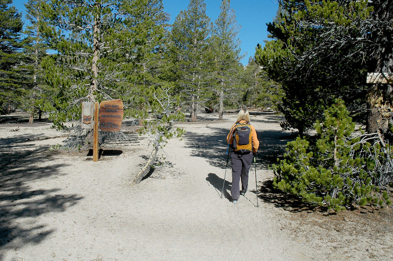 Entering the Golden Trout Wildness near the start of the hike.