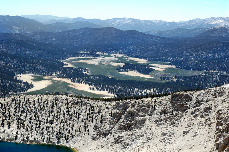 Zoomed in on Big Whitney Meadow.