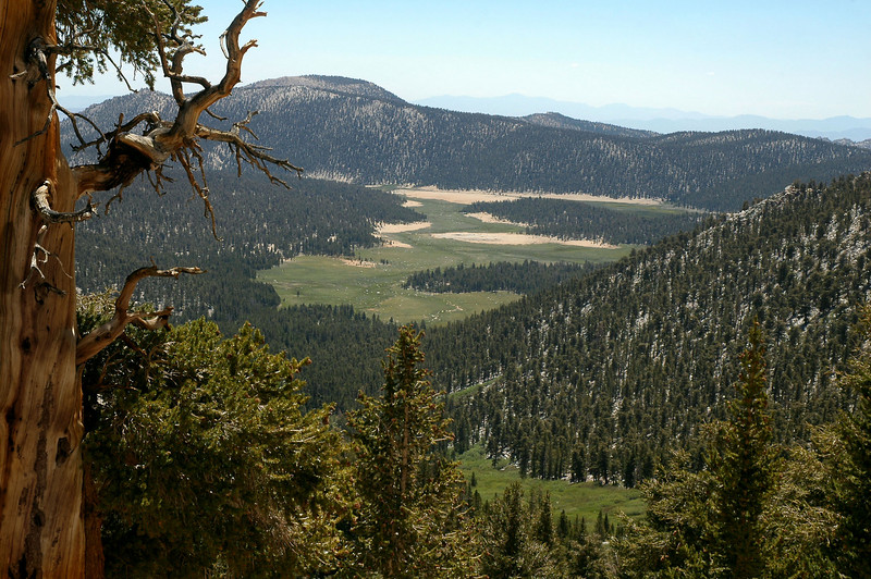 Looking back at Horseshoe Meadow after gaining some altitude.