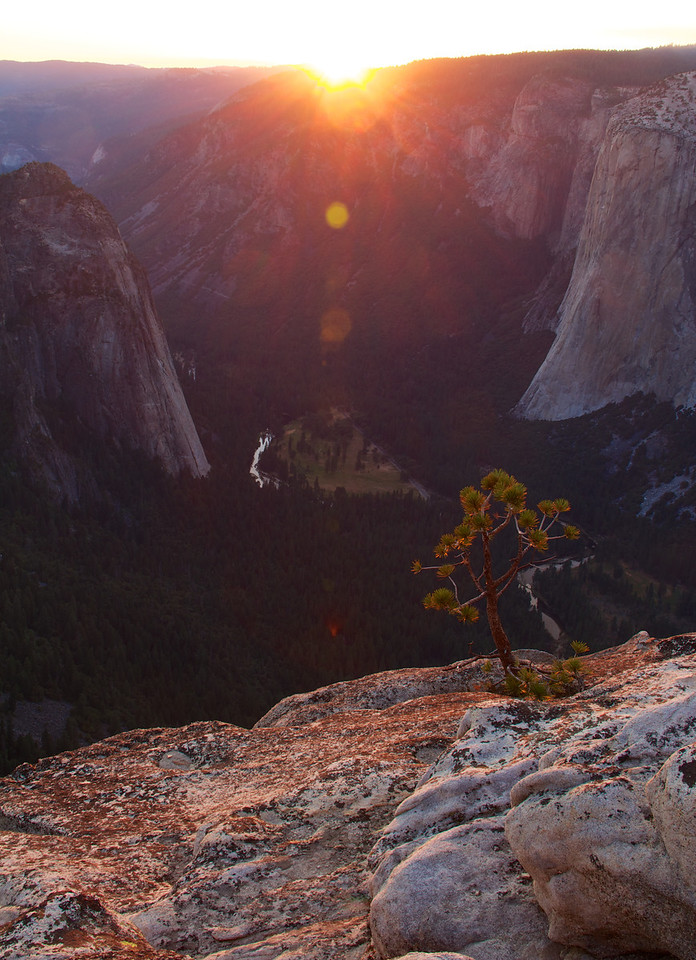 El Capitan and Yosemite Valley from Taft Point
