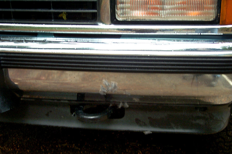 While driving down to the valley on the Glacier Point Rd, a bird dove in front of the truck. We didn't see it fly out the other side. I pulled over expecting to find it stuck in the grill, but all that was there were a few feathers on the bumper.