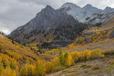 Fall on McGee Creek