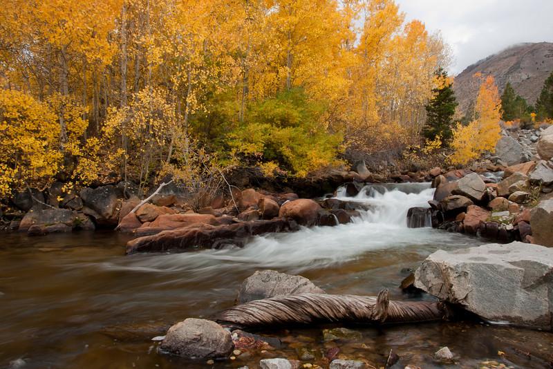 Along Bishop Creek