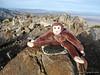 My Screaming Monkey on Owens Peak