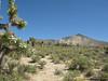 Backus Peak
