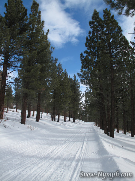 Dec 31, 2009  Lookout Mountain Snowshoe starts at a snowmobile area.   7,583'.