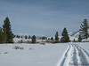The snowmobile tracks kept going, White Mountain way out there