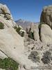 View of Owens Peak