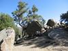 Big boulders and TomG