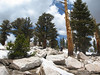 RIdgeline drooling at the peak
