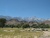 View of Whitney from Lone Pine Visitor Center