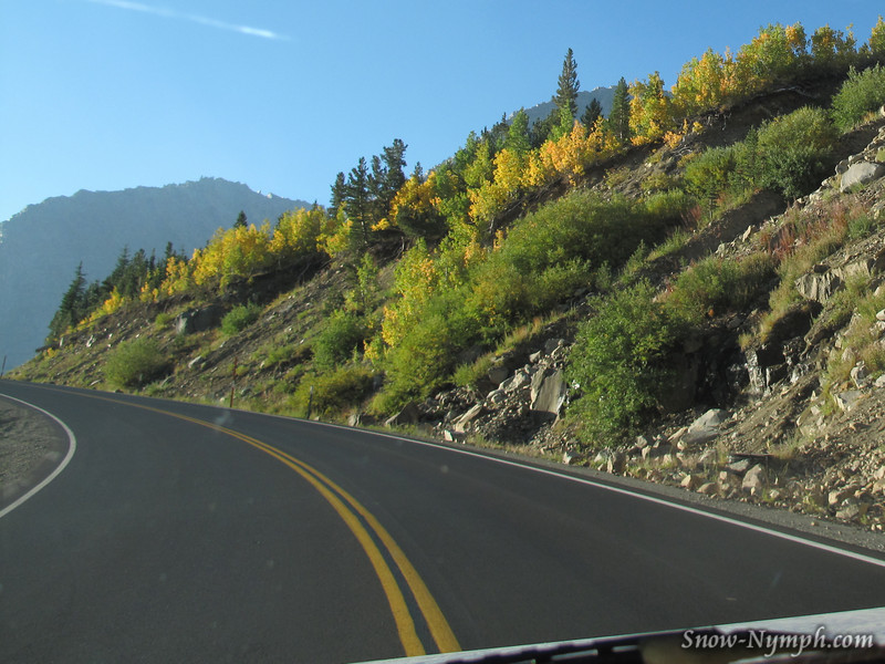 Fall colors on Hwy 120 thru dirty window