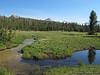 Delaney Creek