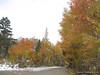 Colors at North Lake