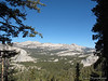 Hoffman and Tuolumne Peaks from Sunrise Trail
